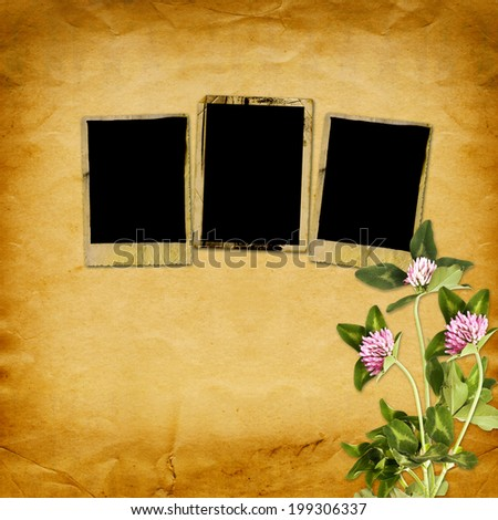 Old vintage frame for photos and bouquet of flowers of pink clover on shabby paper background - stock photo