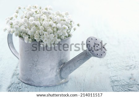 Old vintage metal watering can filled with white baby's breath gypsophila flowers on light blue shabby chic background - stock photo