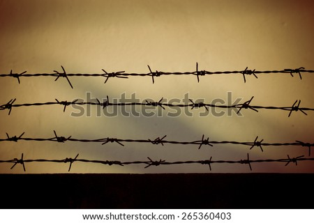 Old wall with barbed wire - stock photo
