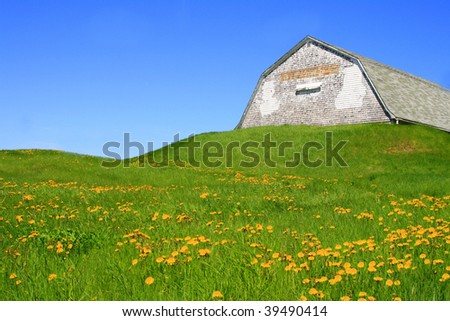 Old weathered barn/potato house in a green meadow on a sunny blue sky day - stock photo