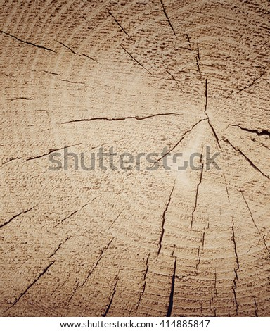Old weathered wood texture, cross section of cut log with concentric annual growth rings. Vintage effect. - stock photo