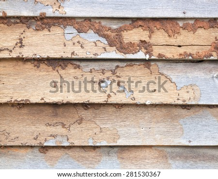 Old weathering wooden wall - stock photo