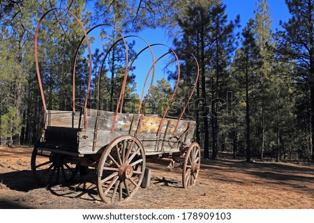 Old western frontier wagon parked in the forest - stock photo