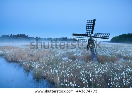 old windmill on swamp with cotton-grass, Drenthe, Netherlands - stock photo