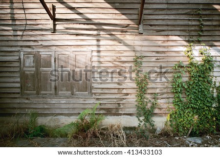 Old window and wood wall with dirty green weed,old abandoned house,color toned. - stock photo