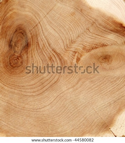 Old wood cut texture - stock photo