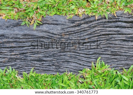 Old wood log or timber with dirty grunge strip and green grass on edge for background, top view - stock photo