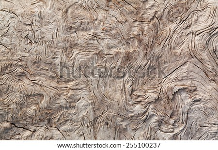 old wood timber natural background - stock photo