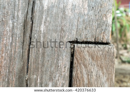 Old wood wall texture background,blur background - stock photo