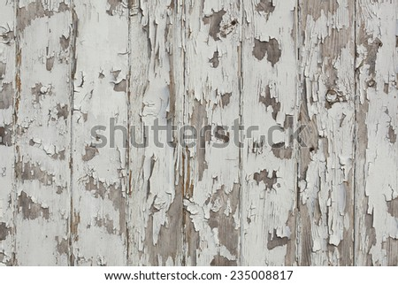 Old wood wall with white paint peeling off slowly. Decay, grunge background. - stock photo