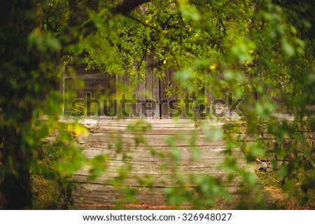 old wooden door through green leaves. selective focus  - stock photo