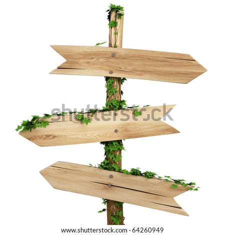 old wooden pointer overgrown with ivy. isolated on white background including clipping path - stock photo