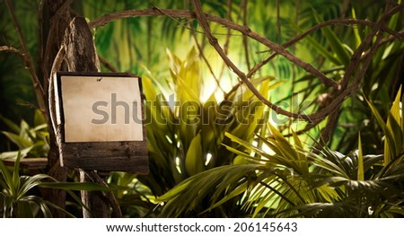 Old wooden sign with stained paper standing in the rainforest jungle. - stock photo
