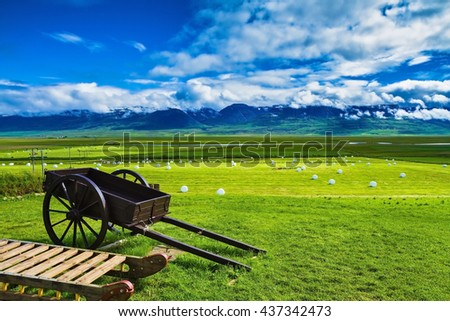 Old wooden sledge and two-wheeled cart on the lawn. The reconstituted village -  Museum Vikings in Iceland - stock photo