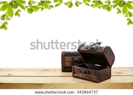 Old wooden treasure chest on the floor and beautiful  green leaves background - stock photo
