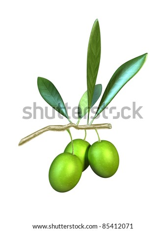 Olive fruits and leaves on a branch. Digital illustration. - stock photo