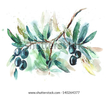 Olive Twig - stock photo