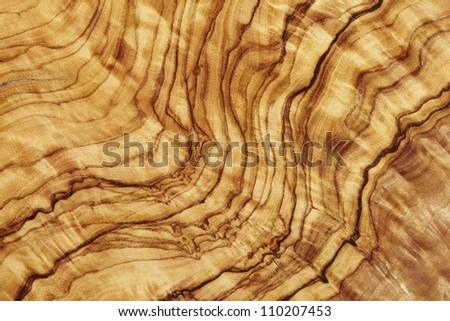 Olive wood close up - stock photo