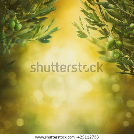 Olives background. Olives on olive tree with bokeh. food background - stock photo