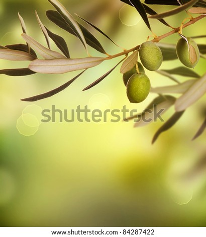 Olives border design - stock photo