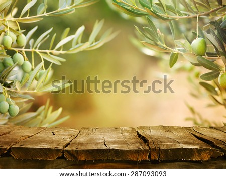 Olives with table. Wooden table with olive trees - stock photo