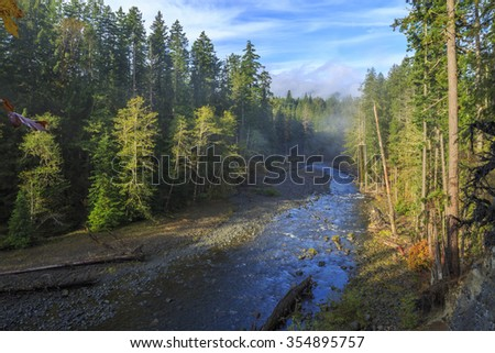 Olympic National Park is a United States national park located in the state of Washington - stock photo