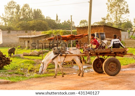 OMO, ETHIOPIA - SEPTEMBER 19, 2011: Unidentified Ethiopian boys on a horse carriage. People in Ethiopia suffer of poverty due to the unstable situation - stock photo
