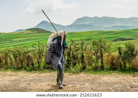 OMO, ETHIOPIA - SEPTEMBER 21, 2011: Unidentified Ethiopian old man in the field. People in Ethiopia suffer of poverty due to the unstable situation - stock photo