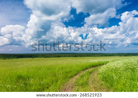 On a Country Lane Through the Green  - stock photo