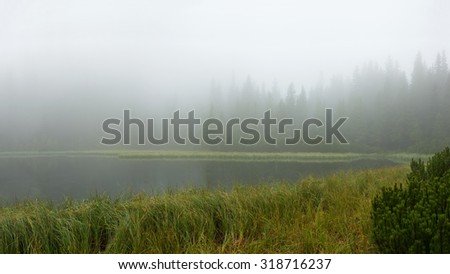On a quiet lake heavy fog, panorama - stock photo