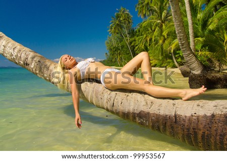 On a Tropical Beach Tanning Pleasure - stock photo