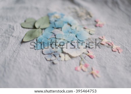 on the gray fabric lined with a composition of dried flower petals - stock photo
