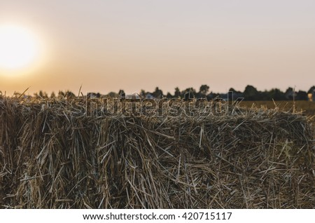 On the hay field in village in sunset time - stock photo