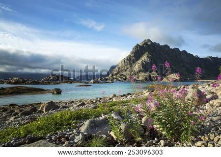 On the way to Henningsvaer, Lofoten Island, Norway - stock photo