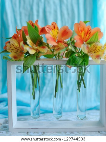 on the window sill with a blue curtain orange spring flowers in test tubes - stock photo