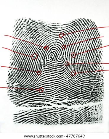 one black fingerprint wit outline identification points - stock photo