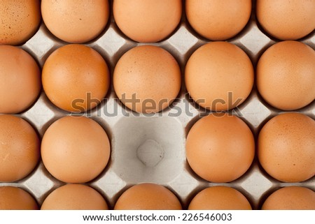 One chicken egg missing from a tray of eggs  - stock photo