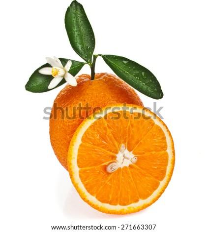 one citrus orange with slice close up isolated on white background - stock photo