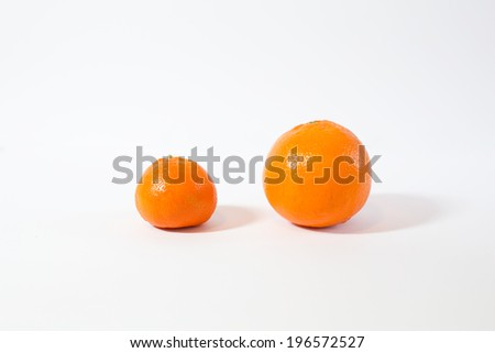 one clementine and one ripe orange isolated on white background. close up - stock photo