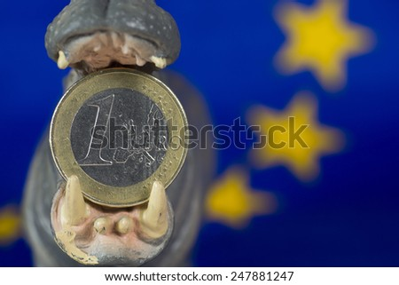 One Euro coin in mouth of hippo figurine - stock photo
