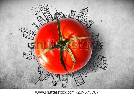 One fresh isolated tomato with business infographics on old background - stock photo
