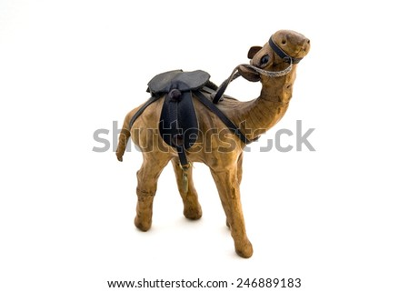 One-hump camel from side on white background - stock photo