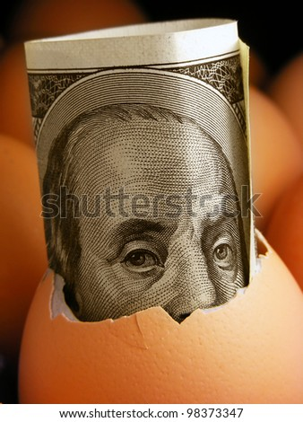 One hundred dollar banknote in eggshell - stock photo
