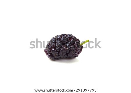 One juicy ripe berry Mulberry - stock photo