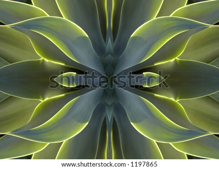 One of a series of ten Kaleidoscopic images made from manipulated photographs - stock photo
