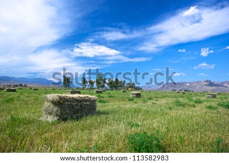 One of many bales of hay lay out in an open field on a midwestern farm. - stock photo