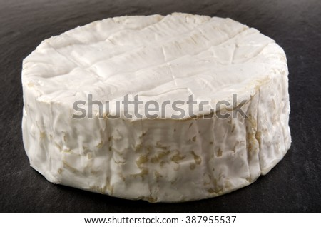 one organic whole french camembert on slate - stock photo