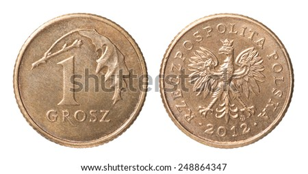One Polish groszy coin isolated on white background - stock photo