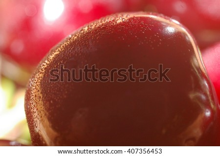 One red sweet cherry fruit with drops of dew close up macro/Closeup juicy fresh sweet cherry with water drops   - stock photo