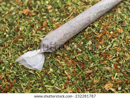 One rolled joint on a small pile of marijuana - stock photo